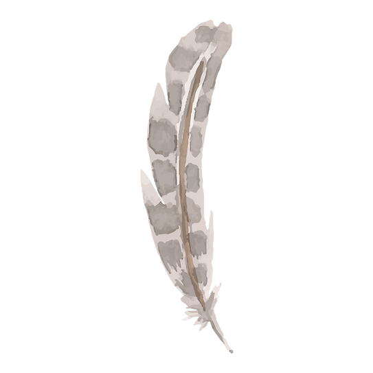Feather 6