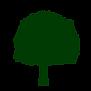 arbre_04.png