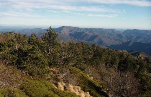 Lutte contre l'érosion : l'inspirante histoire du Mont Aigoual