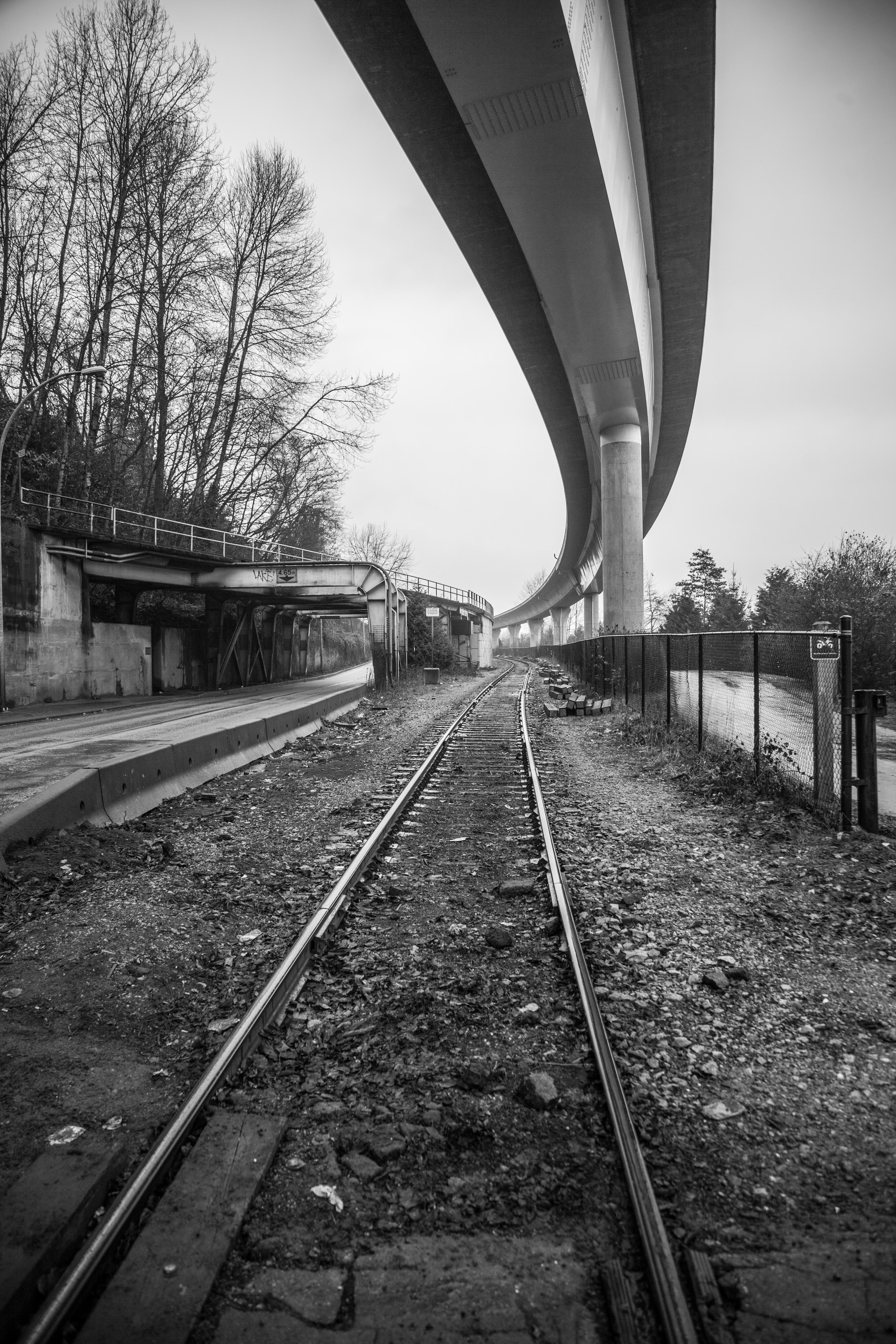Tracks-33.jpg