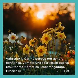 GRÀCIES - CATI.png