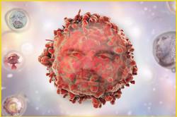 leukemic-cellX13