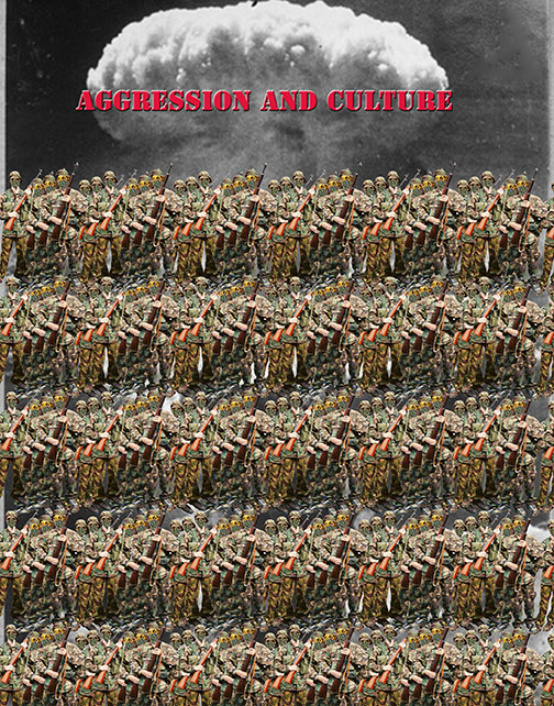 Aggression and Culture copy 2