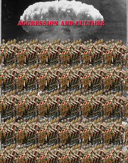 Aggression and Culture copy 2