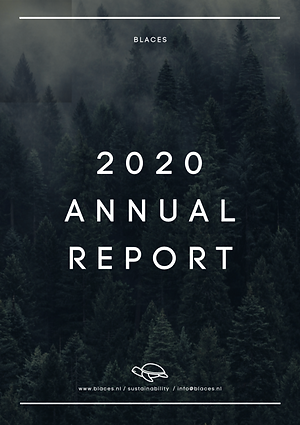 Blaces Annual Report 2020