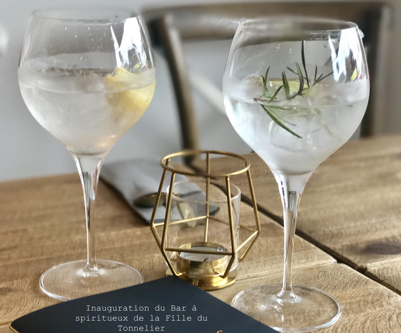 Gin tonic 15 variétés