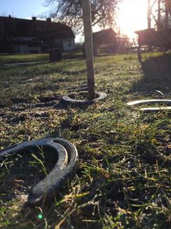 Horseshoe Pitching Sunrise