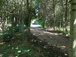 Exit of new path