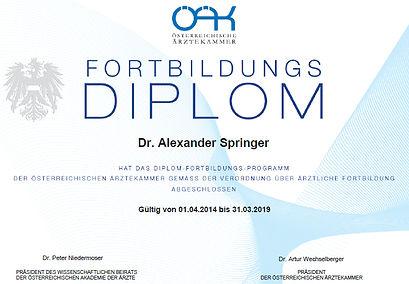 DFP_Diplom.jpg