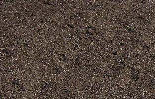 Compost végétal planète terre