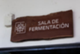 La fermentazione.jpg