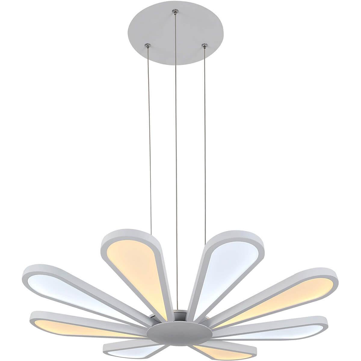 Lucia Tucci Miracoli 200.8 LED
