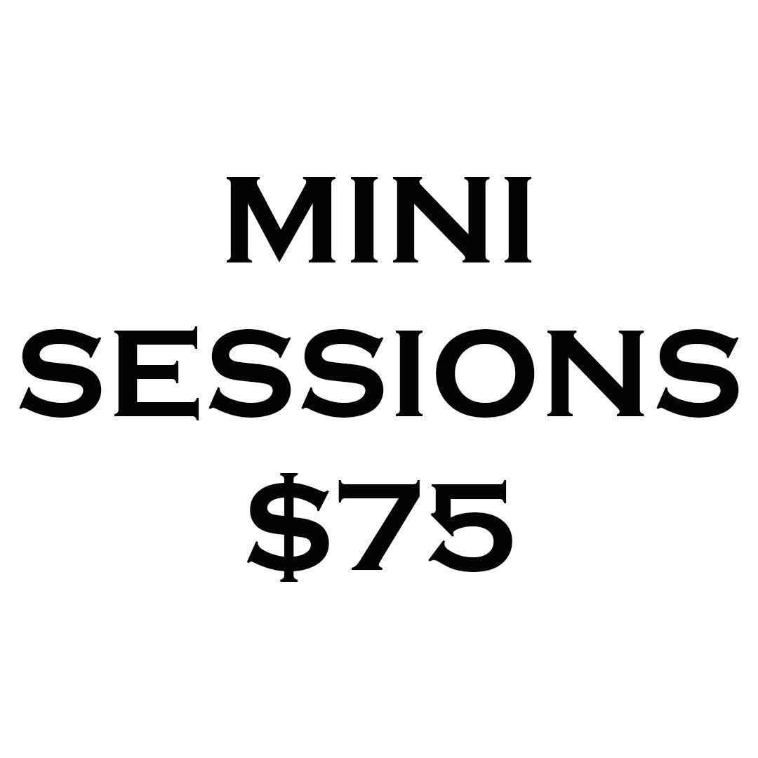 Mini Session