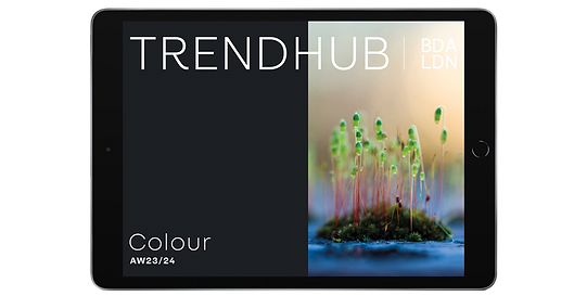 trendhub-colour-aw23-24 copy.png