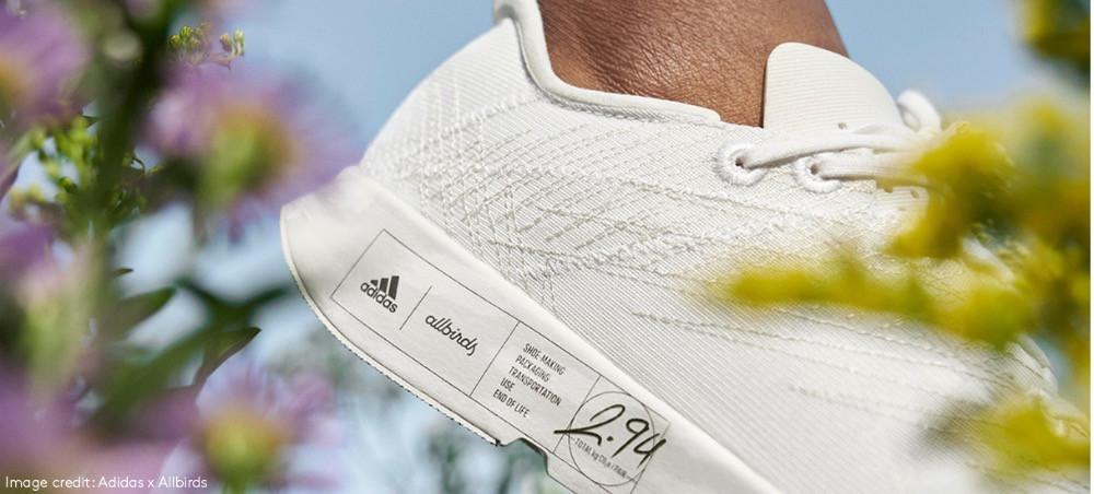 Adidas x all birds white trainer