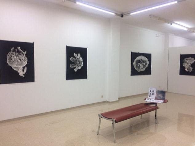expo Javier Viver editado.jpg