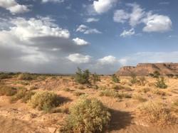 Lumière particulière dans le désert de M'Hamid.jpg