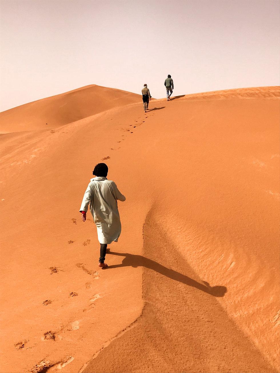 Trek desert MHamid Maroc.jpg