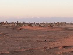 Ambiance mystique du désert.jpg