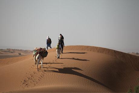 Trek désert M'Hamid Maroc.jpg