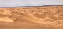 Mer de sable desert MHamid Maroc.jpg