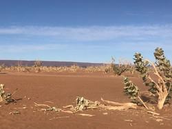Magie du désert sud Maroc.jpg