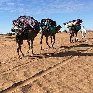 Trek desert Maroc.jpg