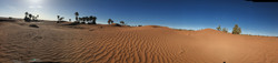 Le vent dessine des vagues sur le sable ocre du désert.jpg