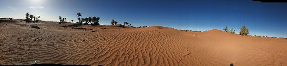 Mer de sable ocre dans le désert de M'Hamid