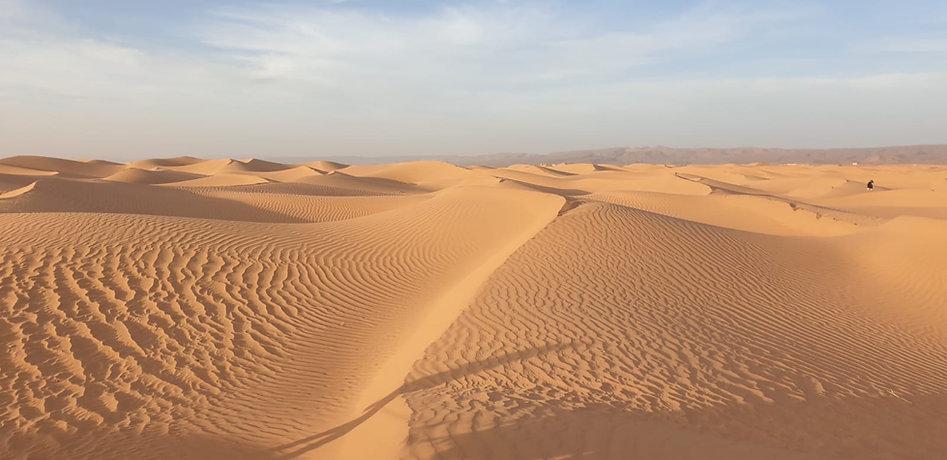 Calme et volupté desert MHamid Maroc.jpg