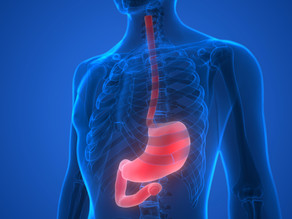 Investigación sugiere que el Párkinson podría nacer en el intestino