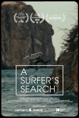A Surfer's Search