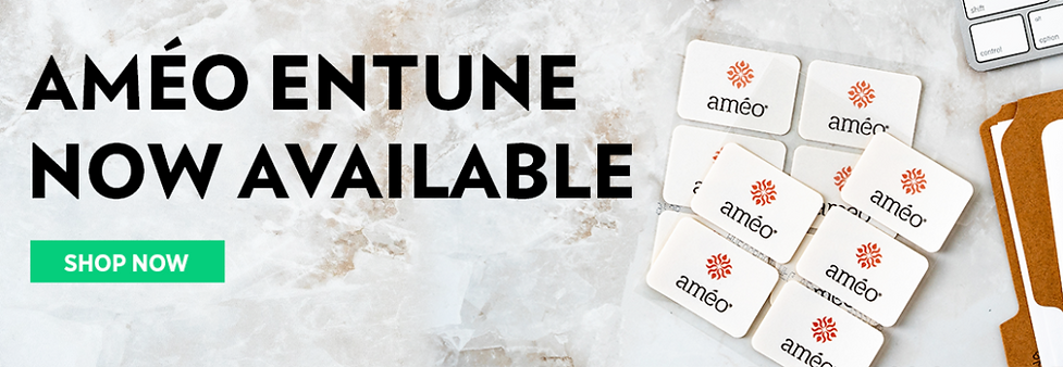 ameo-entune-available-now-1024x354.png