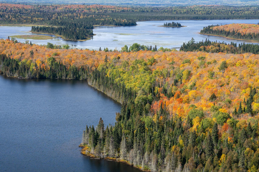 Fall Colors of the Superior National For