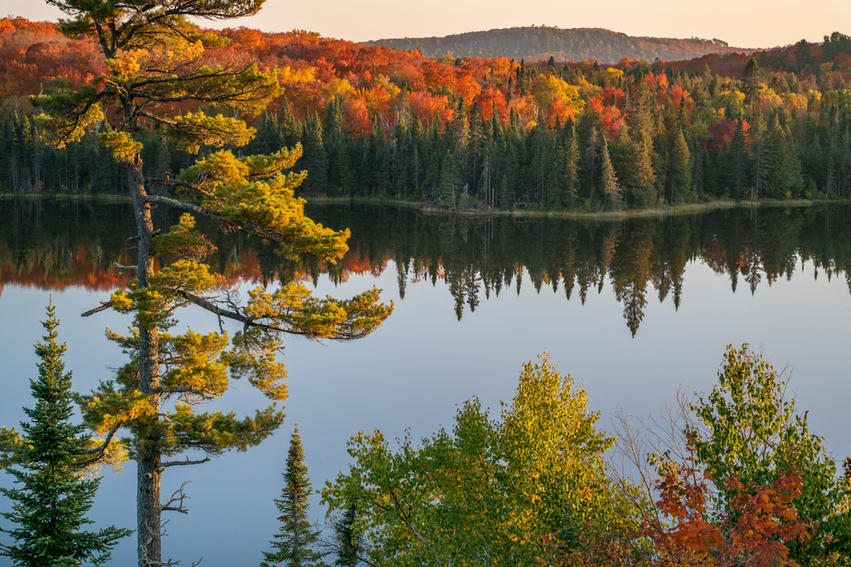 Fall Reflections on Lake Agnes
