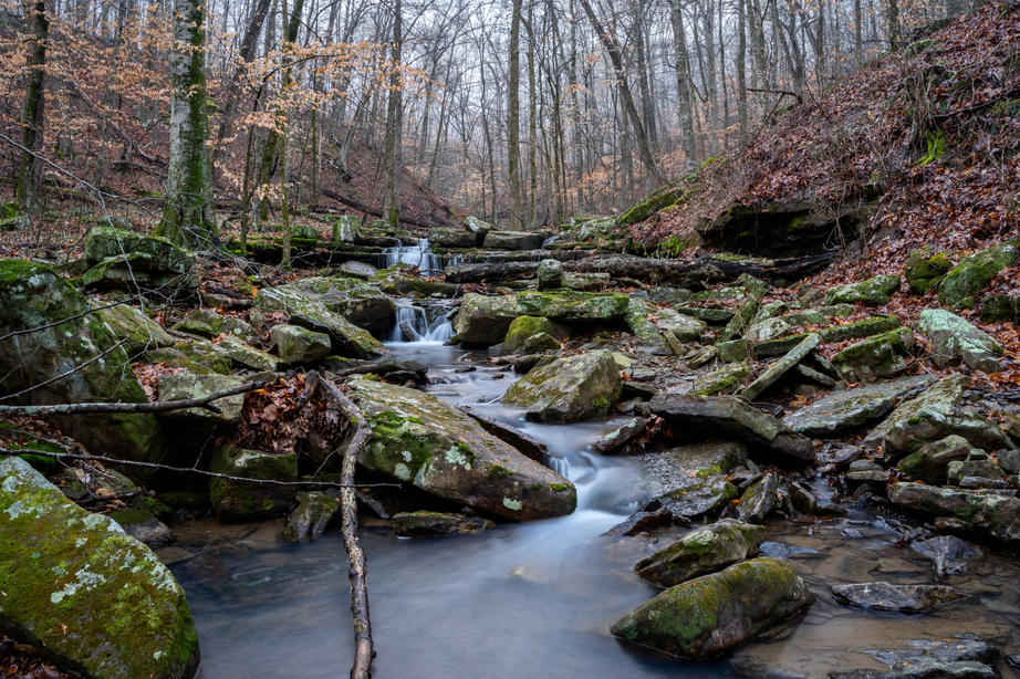 A Creek Deep in the Ozark National Fores