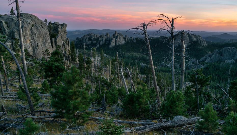 Dusk in the Black Elk Wilderness