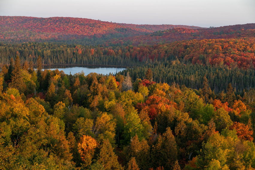 Fall Colors From Mt Oberg