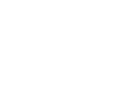 Thoroughbred Athletes, OTTB Rescue, thoroughbred training