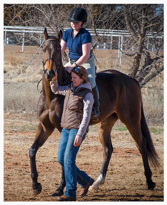 Thoroughbred Athletes Horse Rescue Oklahoma