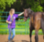Thoroughbred Athletes Horse Rescue Oklahoma