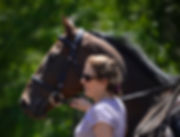 Thoroughbred Athletes, horse rescue, thoroughbred training