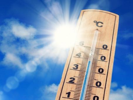 70回目の #ガリの日 は唐突な「夏の気温クイズ!」と「スポーツ」の話題でお楽しみください