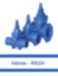 Valves---RSGV.jpg