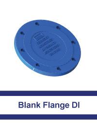 Blank-Flange-DI.jpg