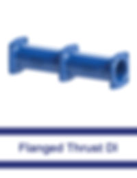 Flanged-Thrust-DI.jpg