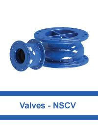 Valves---NSCV.jpg