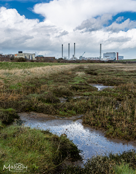 Milton Creek - industry and wildlife