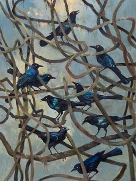 Birds and Bramble