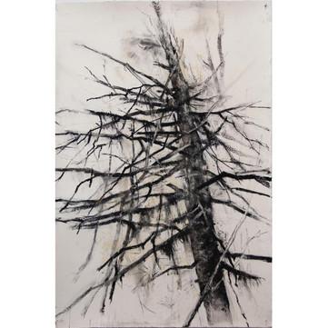 Tree as Sculpture